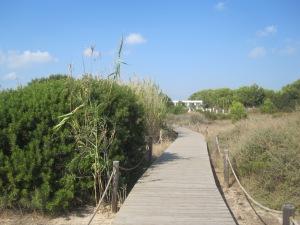 Beautiful walkway along the beach