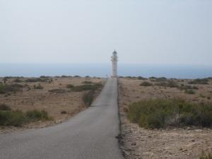 In the distance the Far des Cap de Barbaria lighthouse