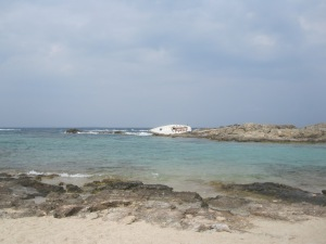 Pictures from the nearby beach....