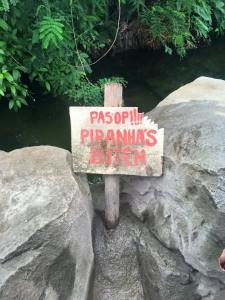This was not just a sign - there really were piranha's!!  And not a whole lot separating you from them - just these rocks!  Hope no one falls in!