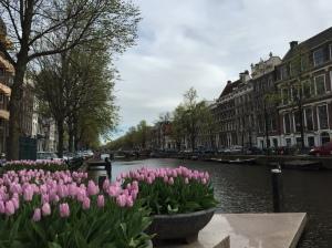 Flowers near the Anne Frank House