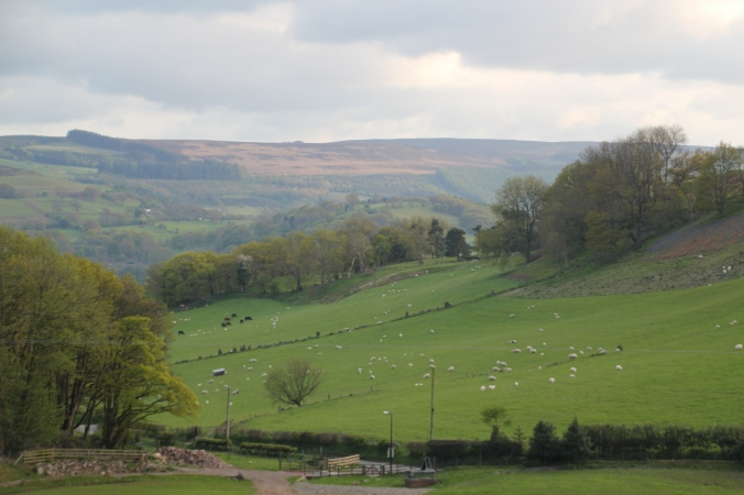 And the opposite - the view from our cottage looking down!