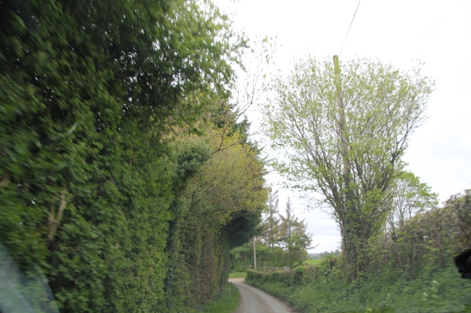 A little adventure to get to the castle - narrow, windy roads with very tall hedges.