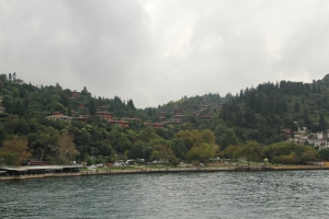 A view of some of the Asian side homes